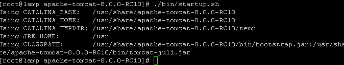 tomcat-start